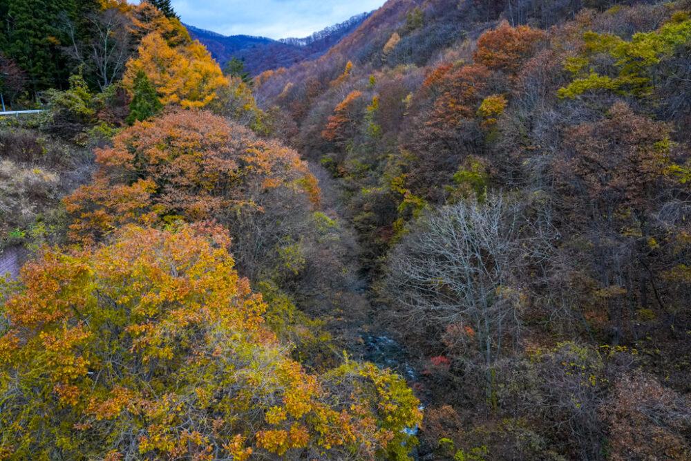 片品川渓谷の紅葉