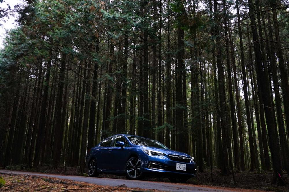 杉林の中のスバル インプレッサ G4