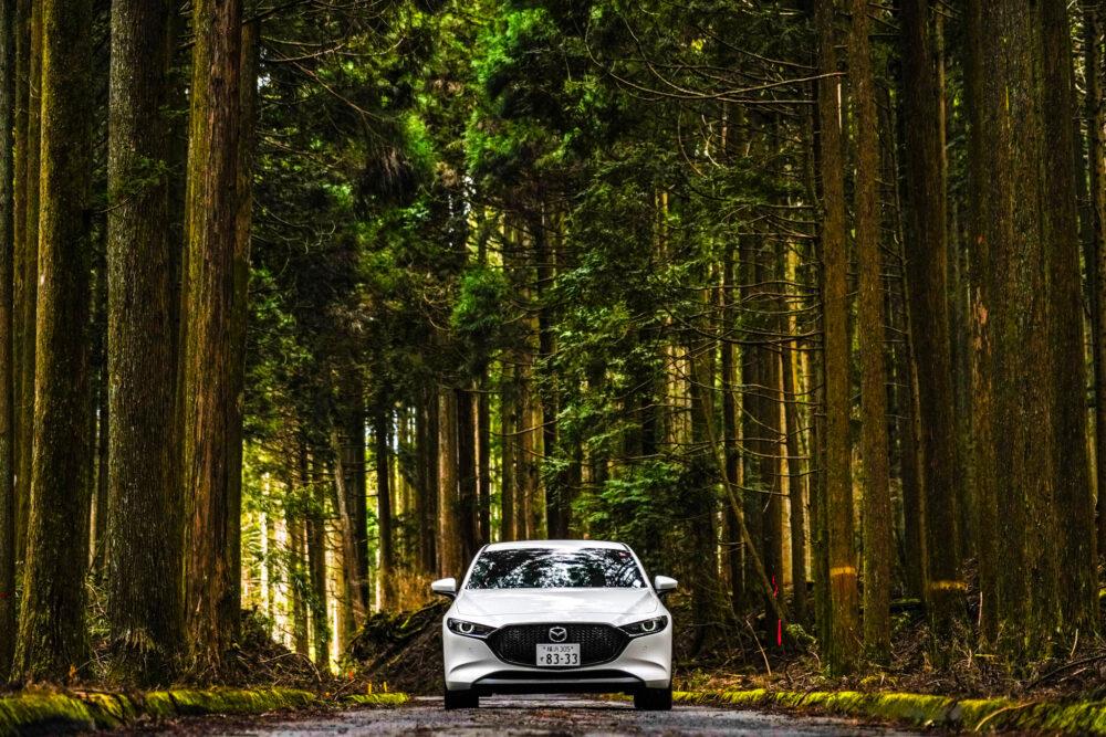 杉林の中のマツダ3ファストバック スカイアクティブX