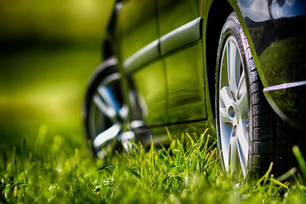 芝の上の車