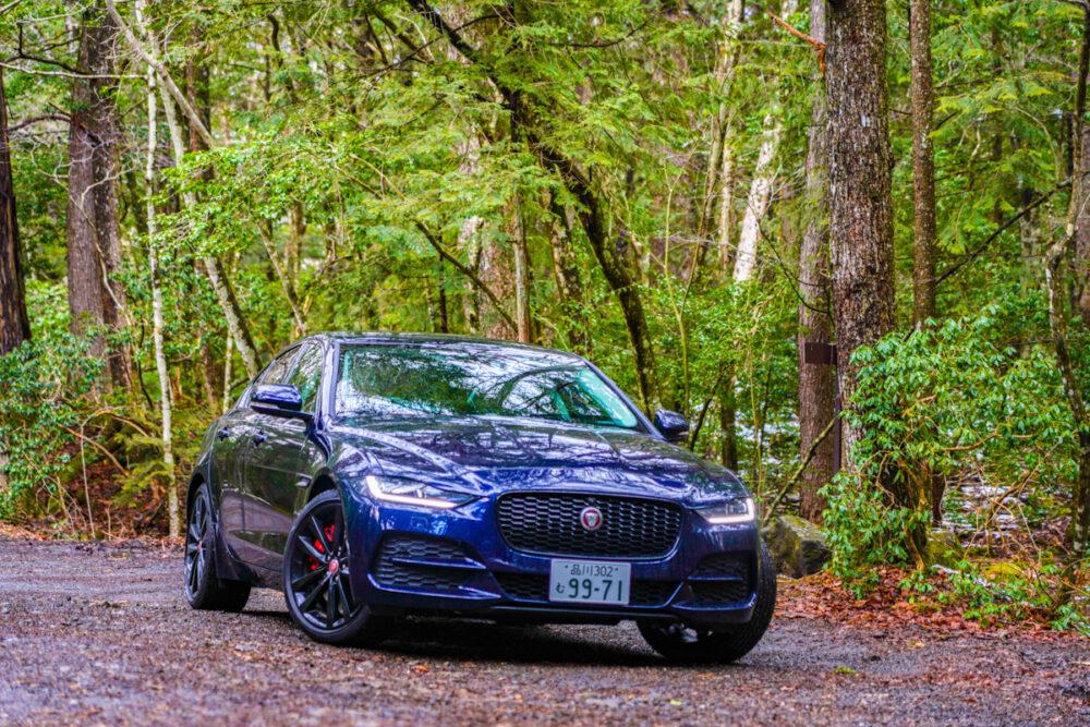 ジャガー XE 2020年モデル 森の中で撮影