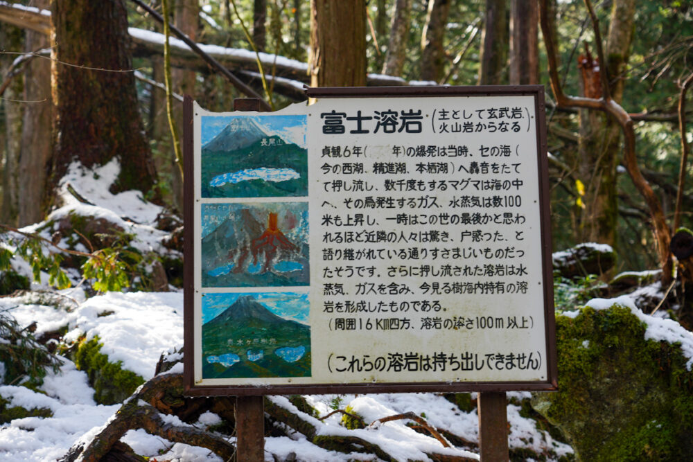 富士溶岩の解説看板
