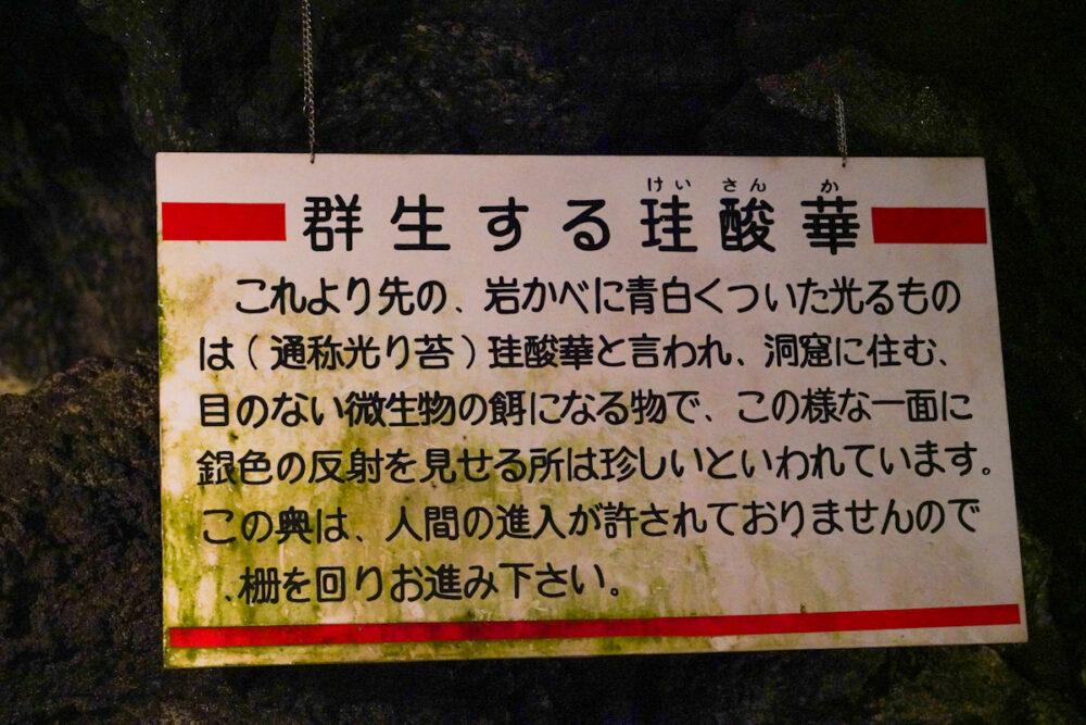 富岳風穴の「群生する珪酸華」の解説看板