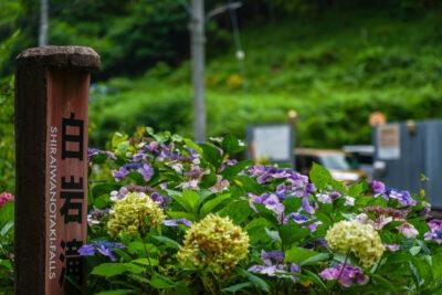 【白岩滝・タルクボ沢】東京都心から一番近い滝 – Go To 非密ドライブvol.4