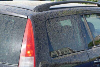 花粉シーズンの洗車・お手入れのコツ5選|コーティングやカバーは有効?