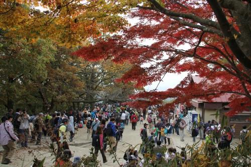 高尾山 広場
