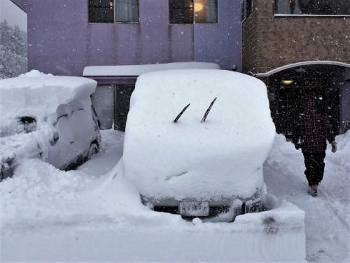 寒冷地 吹雪