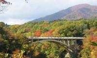 【まだ間に合う紅葉】11月上旬・中旬・下旬に紅葉が見ごろのドライブスポット9選!