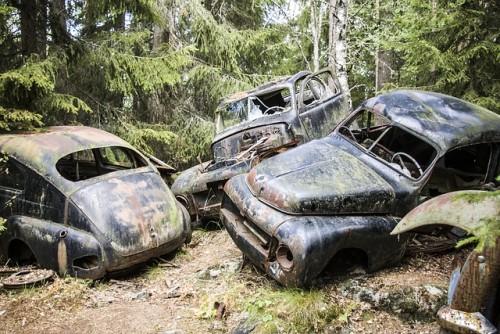 旧車 捨てられた車