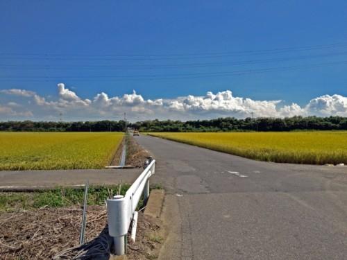 田園の十字路