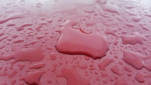 車の水垢 ウロコ 落とし方 水滴
