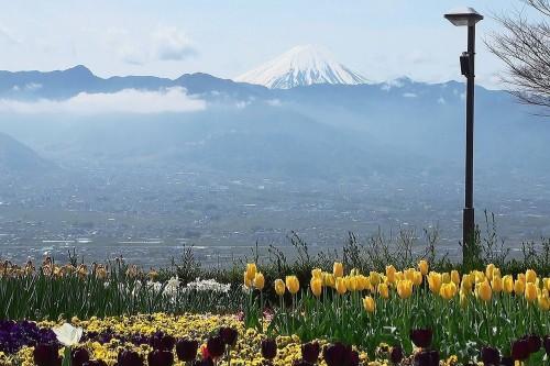 山梨県 富士山 笛吹川フルーツ公園