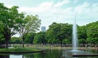【無料も】代々木公園付近の安い混雑の少ない駐車場20選|最大料金設定があるのは?