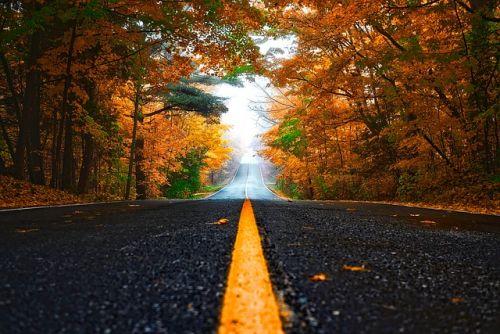 ドライブ 道路