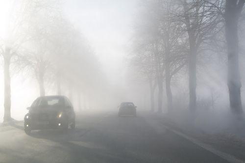 フォグランプ 霧