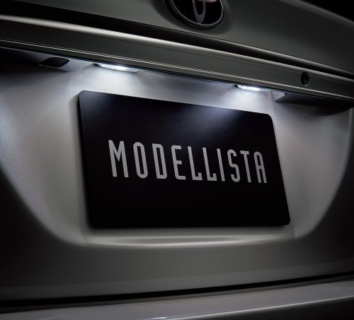 新型 カローラ フィールダー モデリスタ エアロキット LEDライセンスランプ