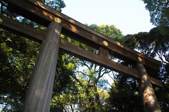 神社 明治神宮 東京