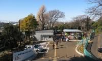 【野毛山動物園 駐車場】安いおすすめランキングTOP21!混雑状況は?