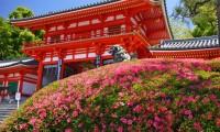 【八坂神社 駐車場】無料・安いおすすめランキングTOP21!上限料金も