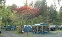 【朝霧高原オートキャンプ場 総合情報】富士山の天然水がおいしい!口コミや評価は?