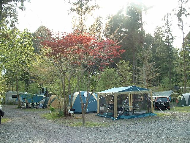 朝霧高原オートキャンプ場 静岡県