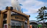 【日本坂PA(パーキングエリア) 上り・下り 最新情報】焼津の新鮮な魚や海鮮丼も