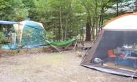 【ペンギン村オートキャンプ場 総合情報】森の中で満点の星空を楽しめる!口コミや評判は?