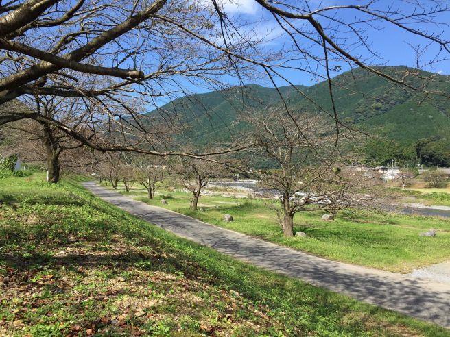 粕川オートキャンプ場 岐阜県