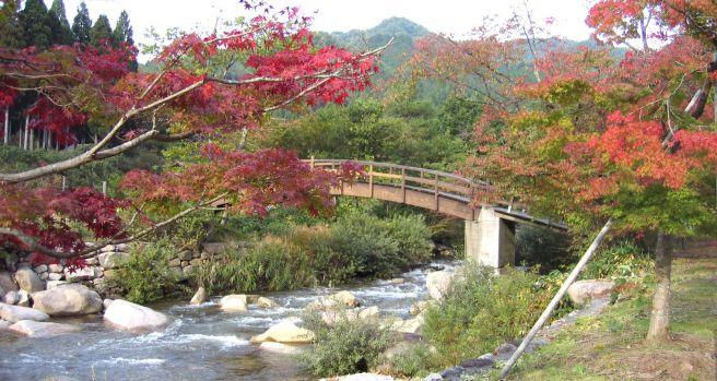 黒木キャンプ場 岡山県