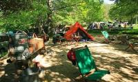 【自然の森ファミリーオートキャンプ場 総合情報】魚のつかみ取りを楽しめるキャンプ場!