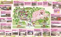 【佐倉草ぶえの丘 総合情報】遊具やBBQが満喫できるキャンプ場!宿泊施設もバリエーション豊か