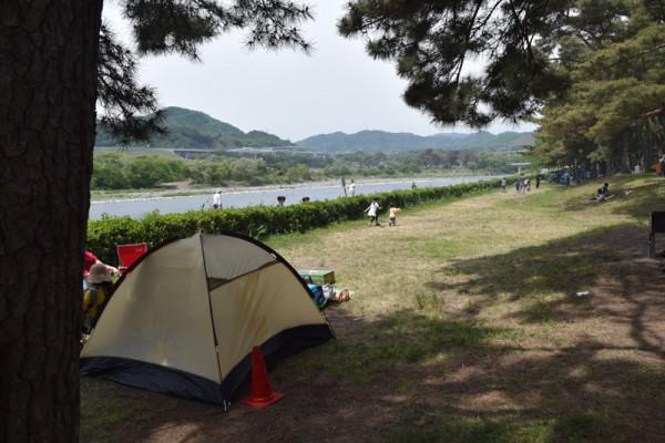 上大島キャンプ場 テントサイト