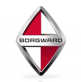 ボルクヴァルト ロゴ