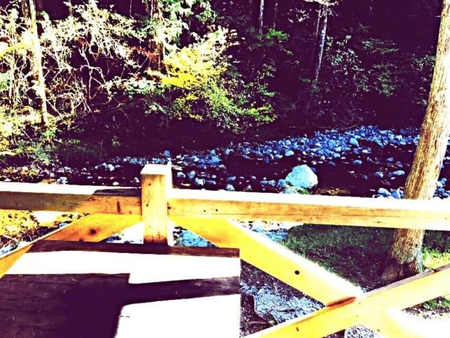 洞川キャンプ場 サイト