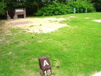 赤穂海浜公園オートキャンプ場 ファミリーサイト