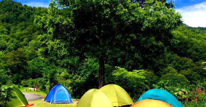 雨飾高原キャンプ場 サイト