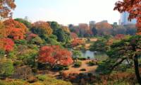 日本庭園「六義園」周辺駐車場【安い順】おすすめ10ヶ所