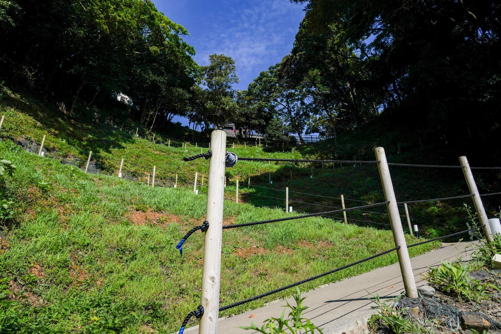 聖域の岬・青の洞窟 パワースポット「つづら折りの坂」