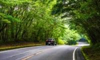 【富士山スカイライン】お役立ちドライブ情報|絶景ポイントとマイカー規制