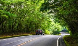 【富士山スカイライン】お役立ちドライブ情報|絶景ポイントとマイ...