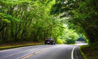【富士山スカイライン】お役立ちドライブ情報 絶景ポイントとマイカー規制
