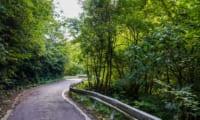 【酷道】国道299号・十石峠は関東一ヤバい?|日本の峠#3