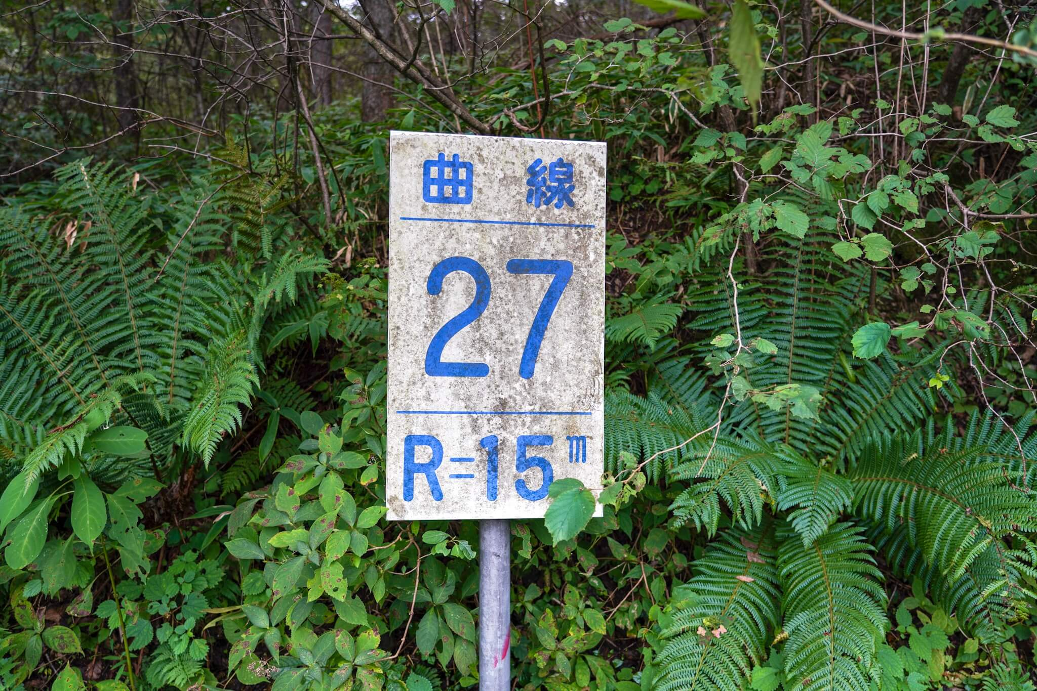 榛名山(秋名山)カーブNo.27
