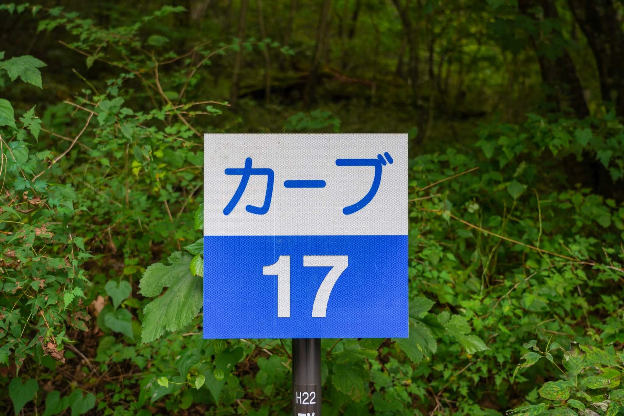 赤城山 峠 カーブNo.17