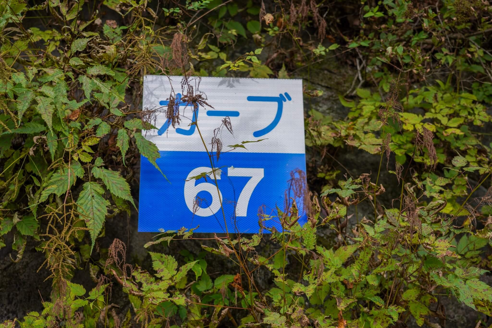 赤城山 峠 カーブNo.67